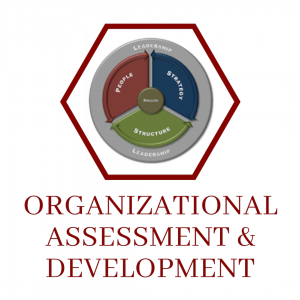 Organizational Assessment & Development