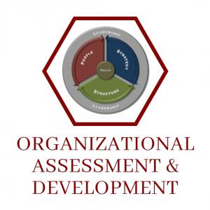 Organizational Assessment & Development